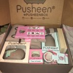 Winter 2016 Pusheen Box Opening